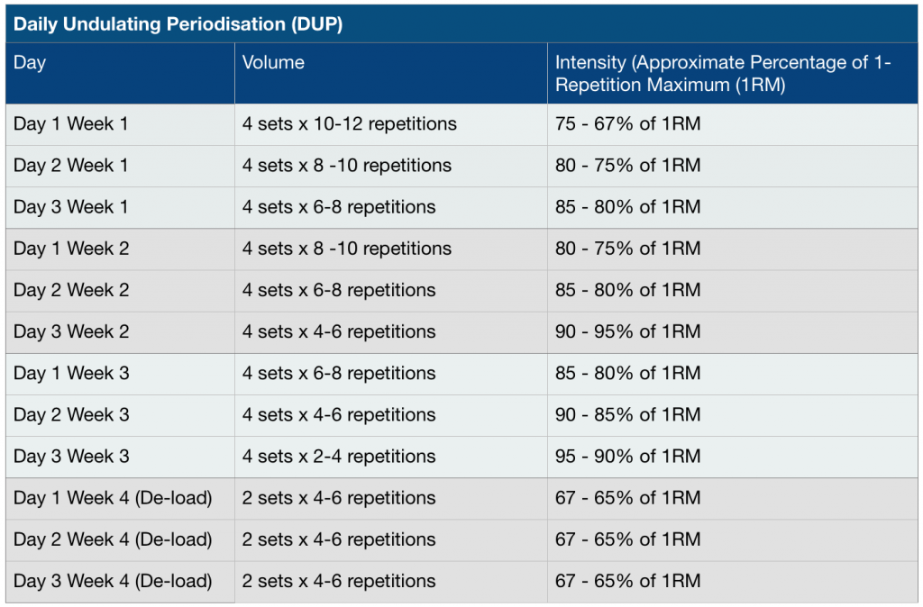 Daily undulating periodisation dup 101 jc fitness for Undulating periodization template